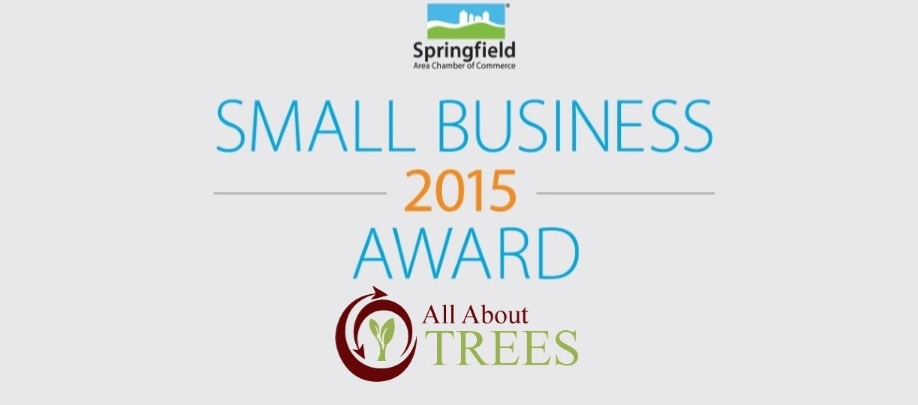 Chamber Small Business of The Year Award Slider - All About Trees - Tree Service Springfield MO