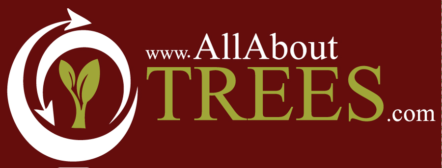 All About Trees Logo